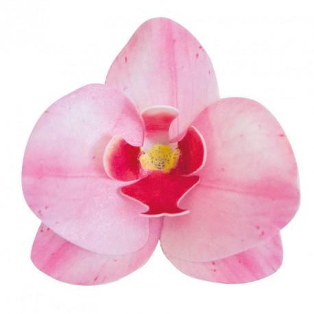 Ätbar dekoration, rosa orkidé 10st