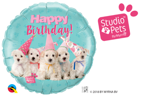 Folieballong, bday puppies