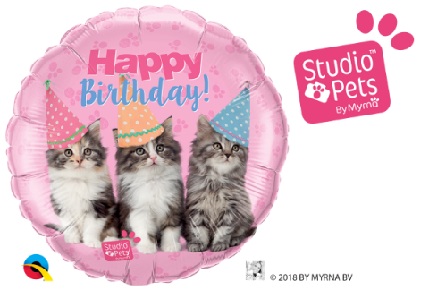 Folieballong, bday kittens